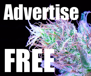 Free Ads - Claim Yours Now